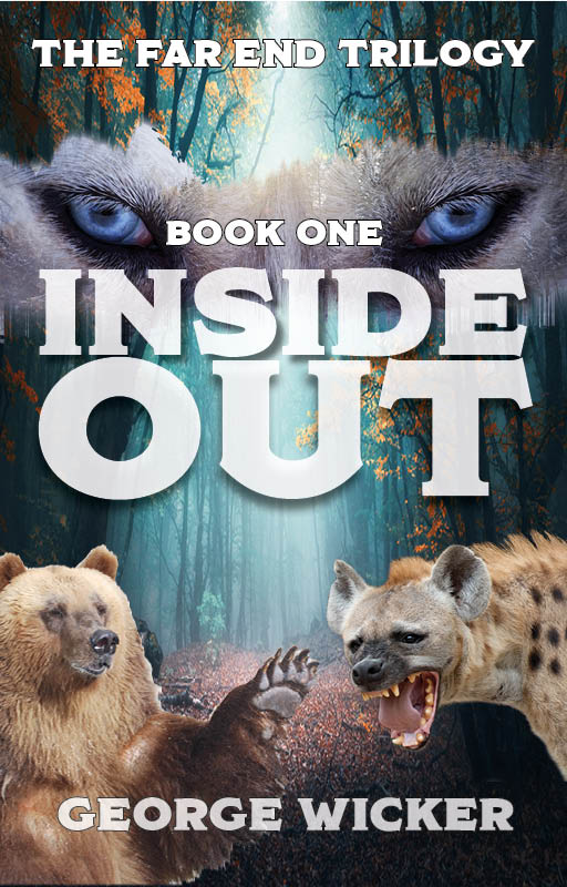 Young Adult Fantasy Novel Inside Out